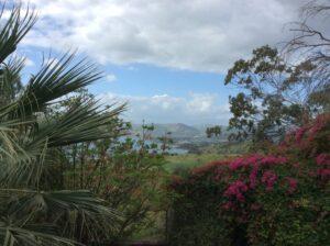 Israëlreis naar het meer van Galilea