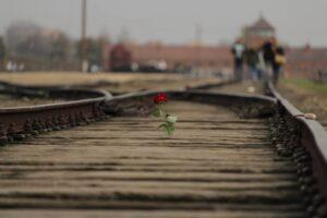 concentratiekamp Auschwitz/Birkenau