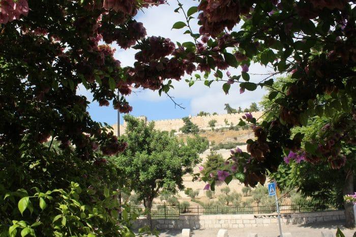 Gemeentereis Israël vanuit Leek